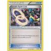 Lucario Spirit Link - XY211 Thumb Nail